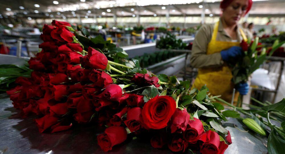 Sevgililer Günü çiçekleri