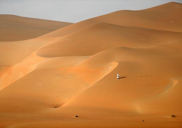 Birleşik Arap Emirlikleri / Çöl