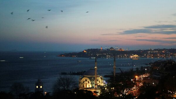 İstanbul - Boğaziçi - Dolmabahçe Camii - Sputnik Türkiye