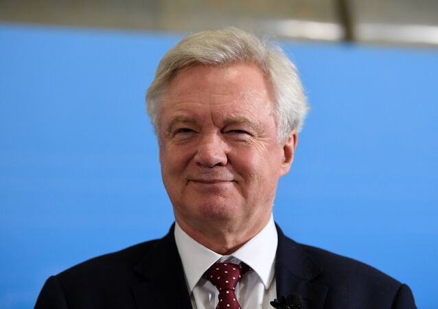 İngiltere'nin Brexit Bakanı David Davis