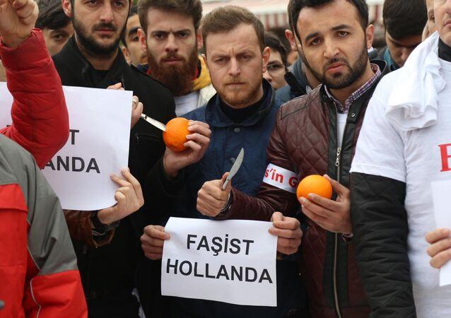 Ak Partili gençler Hollanda'yı portakal bıçaklayarak protesto etti