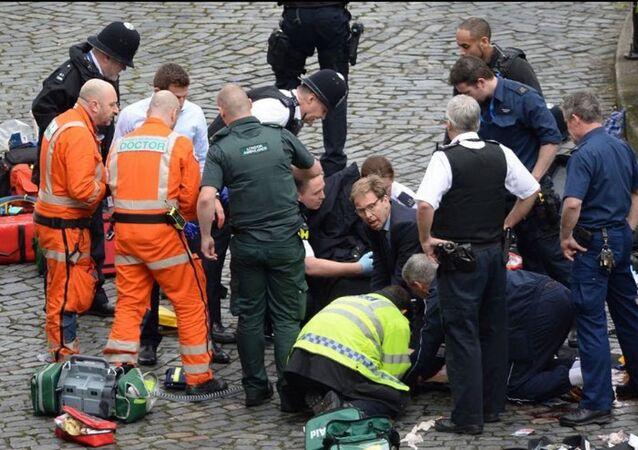 Londra'daki saldırıda bıçaklanan polise ilk müdahaleyi Bakan Elwood yaptı
