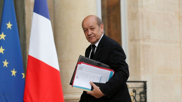 Fransa Savunma Bakanı Jean-Yves Le Drian - Sputnik Türkiye