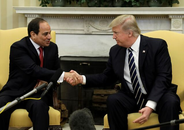 ABD Başkanı Donald Trump ile Mısır Cumhurbaşkanı Abdulfettah el Sisi