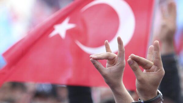 MHP'nin Yenikapı mitingi - Sputnik Türkiye