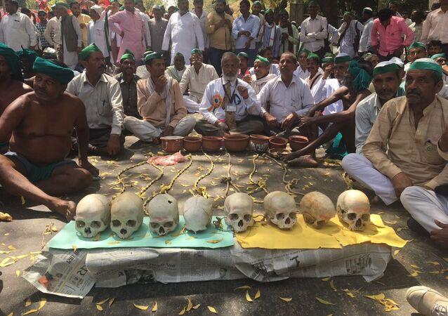 Tamil Nadu çiftçileri