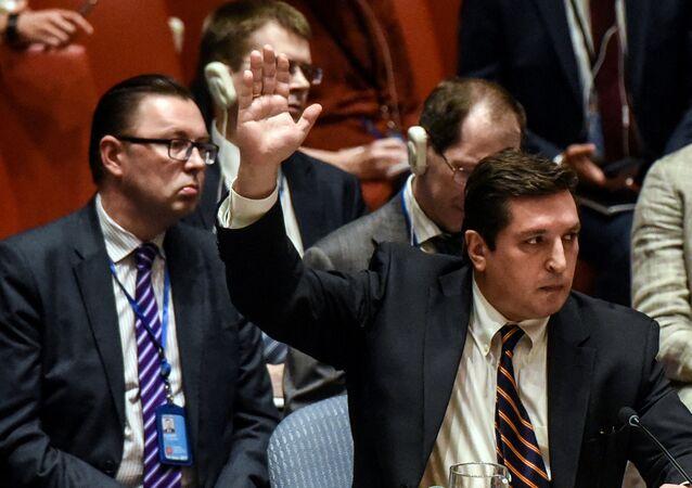 Rusya'nın BM Daimi Temsilci Yardımcısı Vladimir Safronkov