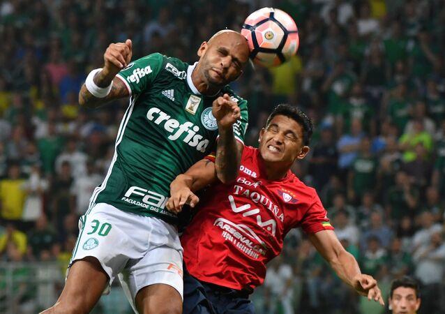 Palmeiraslı futbolcu Felipe Melo