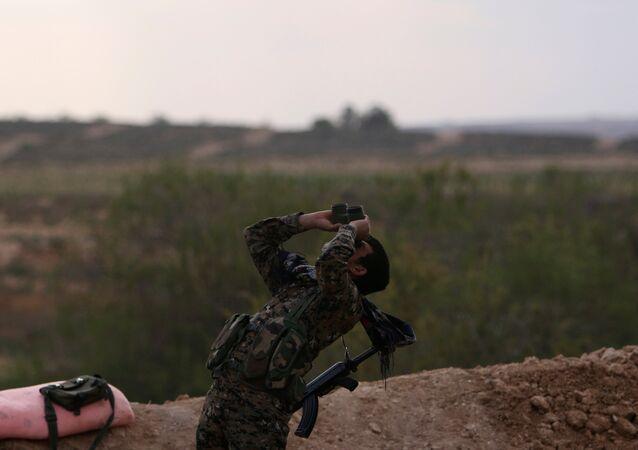 Demokratik Suriye Güçleri (DSG)