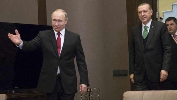 Erdoğan ve Putin, Soçi'de görüştü - Sputnik Türkiye