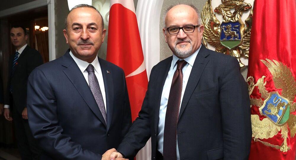 Mevlüt Çavuşoğlu - Srdjan Darmanoviç