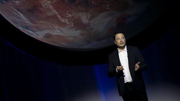 Tesla Motors CEO'su Elon Musk - Sputnik Türkiye