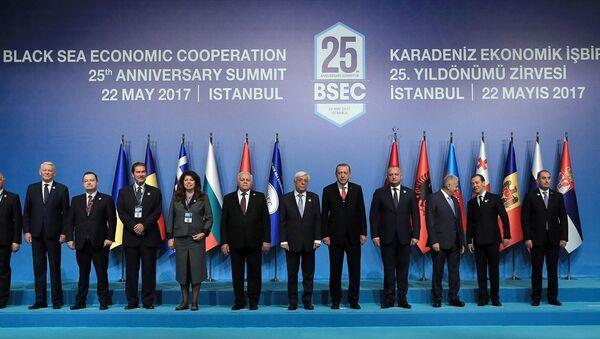 KEİ 25. Yıldönümü Zirvesi - Sputnik Türkiye