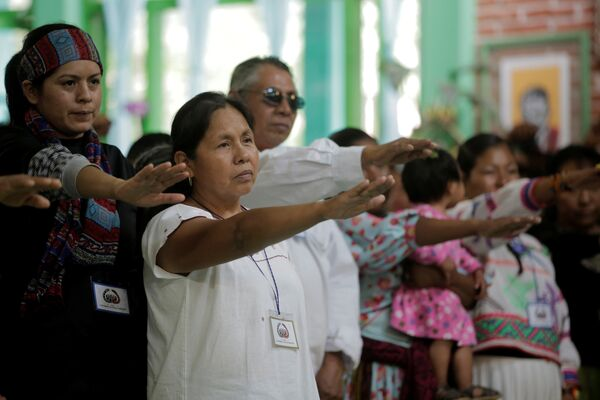Yerlilerin ve EZLN'nin adayı Patricio, seçimlere bağımsız aday olarak girecek. Seçimlere bağımsız adayların girmesine 2014'te seçim reformuyla izin verilmişti. - Sputnik Türkiye
