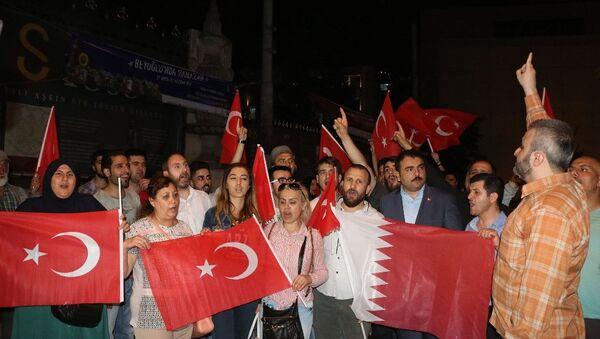 Beyoğlu'nda Katar'a destek eylemi - Sputnik Türkiye