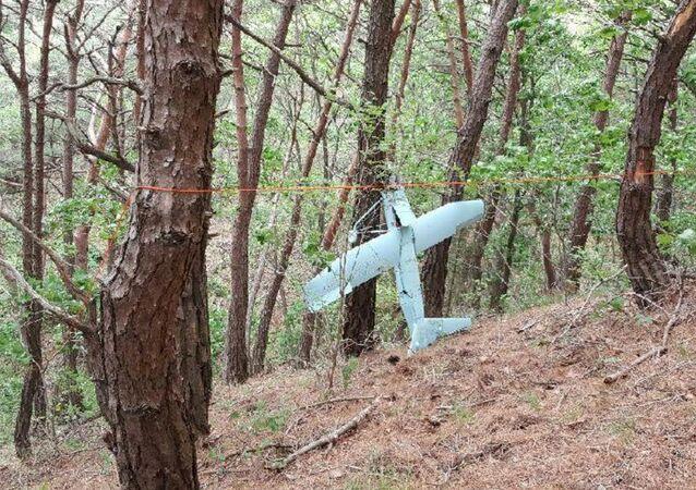 Kuzey Kore'ye ait olduğu belirtilen insansız hava aracı