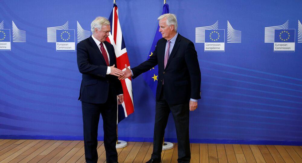 AB Komisyonu'nun Başmüzakerecisi Michael Barnier- İngiltere'nin Brexit Bakanı David Davis
