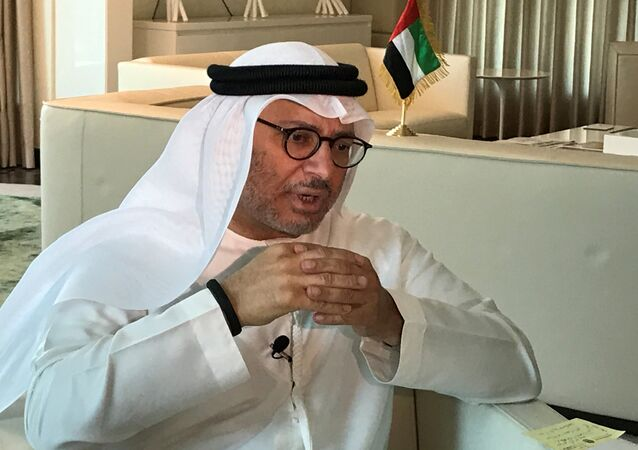Birleşik Arap Emirlikleri (BAE) Dışişleri Bakanı Enver Gargaş