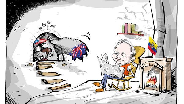 Assange, büyükelçilik binasındaki 5.yılını doldurdu - Sputnik Türkiye