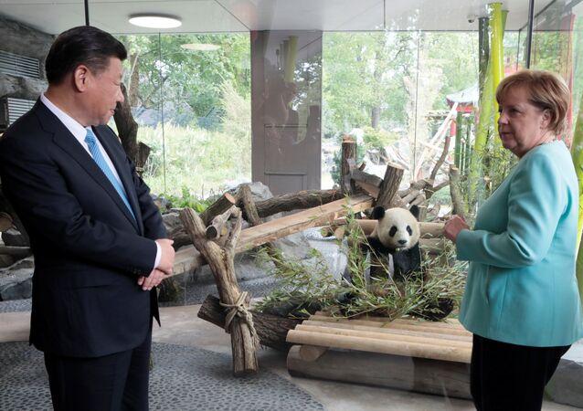 Almanya Başbakanı Angela Merkel- Çin Devlet Başkanı Şi Cinping