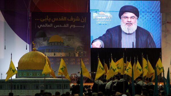 Hizbullah lideri Hasan Nasrallah - Sputnik Türkiye