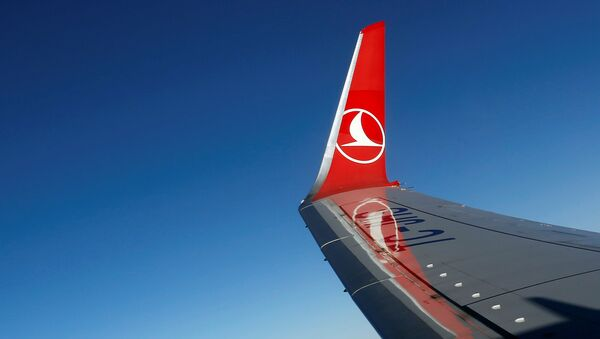 THY - Türk Hava Yolları - Sputnik Türkiye