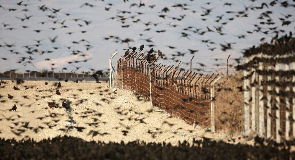İsrail - Ürdün sınırı