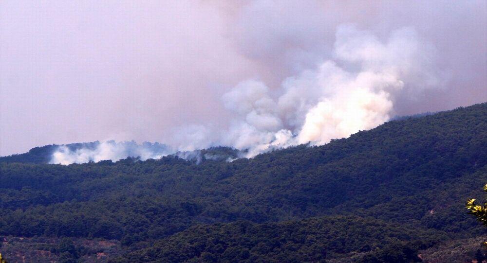 Kazdağları - orman yangını