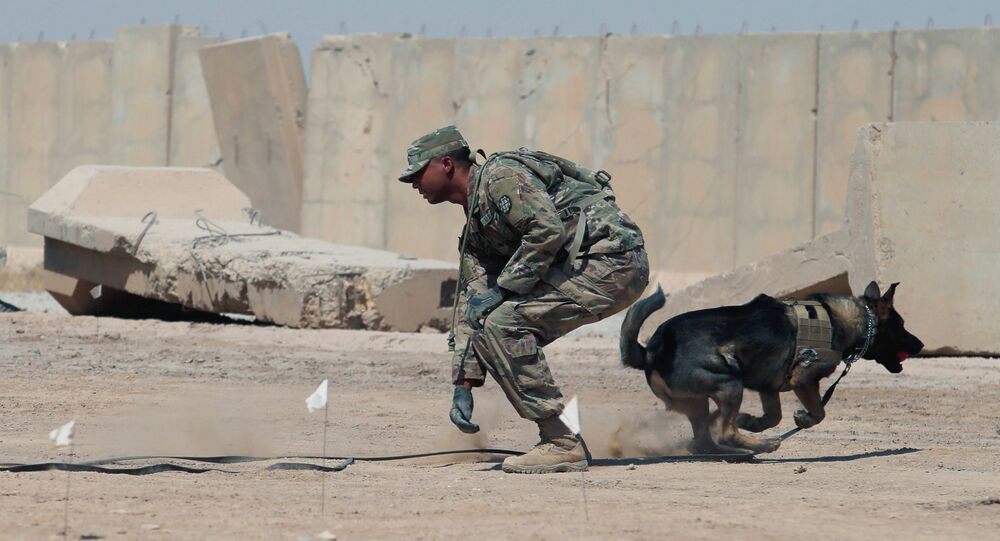 ABD askeri- Irak