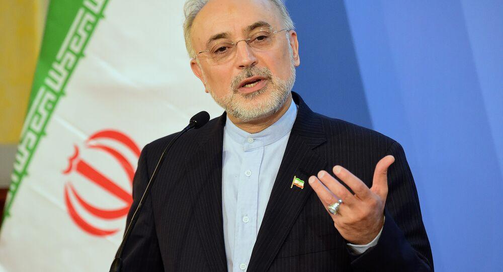 İran Atom Enerjisi Örgütü Başkanı Ali Ekber Salihi