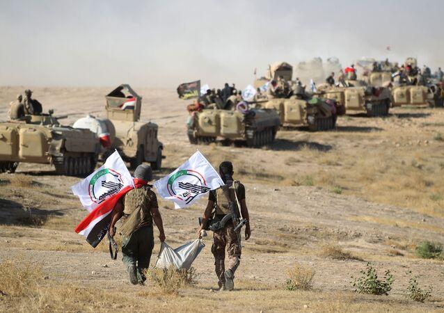 Haşdi Şabi milisleri