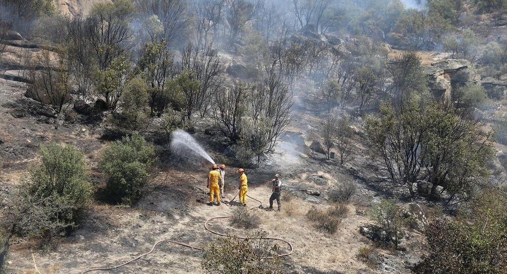 Yatağan'da yangına gelen jandarma kaçak ekilmiş kenevir buldu