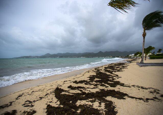 Irma kasırgası, Karayipler