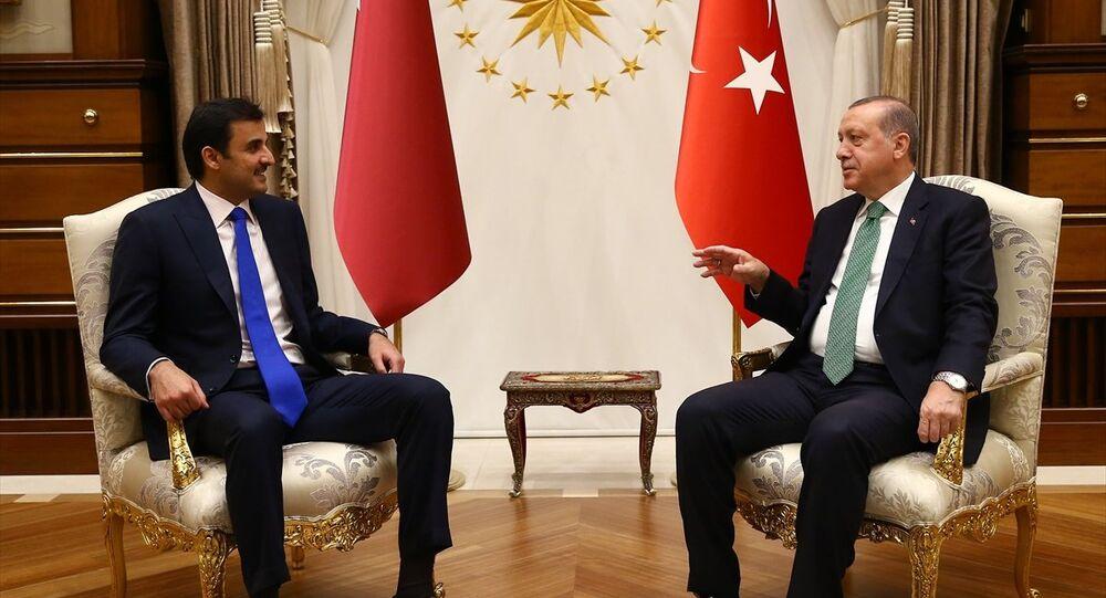 Cumhurbaşkanı Recep Tayyip Erdoğan ile Katar Emiri Şeyh Temim bin Hamed El Sani