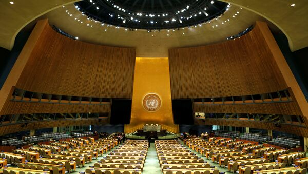 BM Genel Kurulu - Sputnik Türkiye