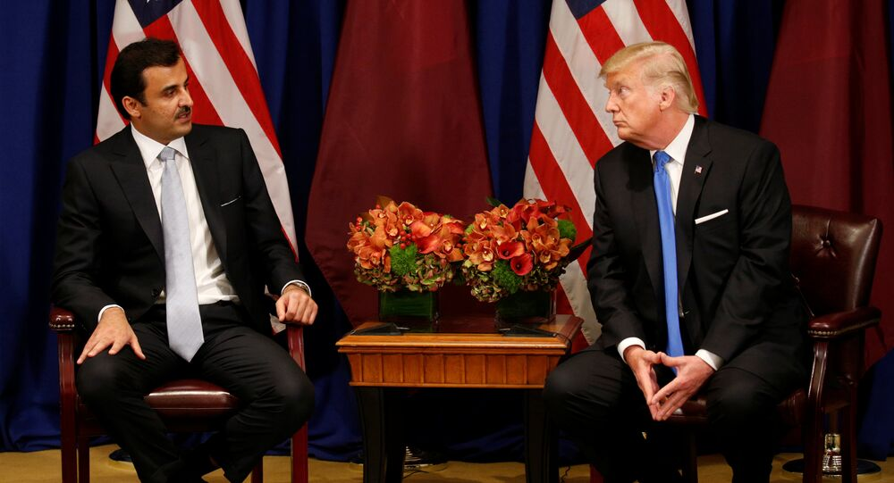 ABD Başkanı Donald Trump ile Katar Emiri Temim bin Hamad El Sani