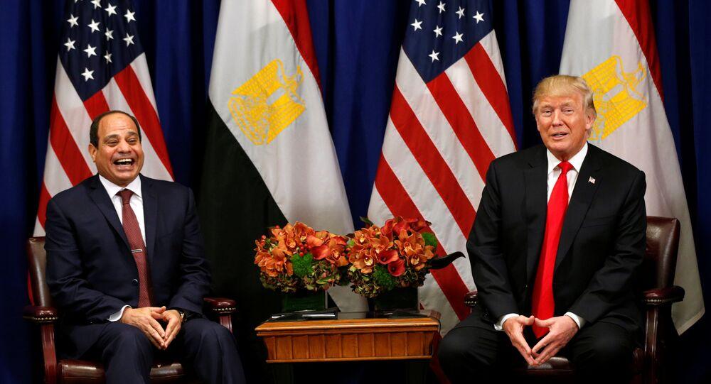 ABD Başkanı Donald Trump- Mısır Cumhurbaşkanı Abdülfettah el Sisi