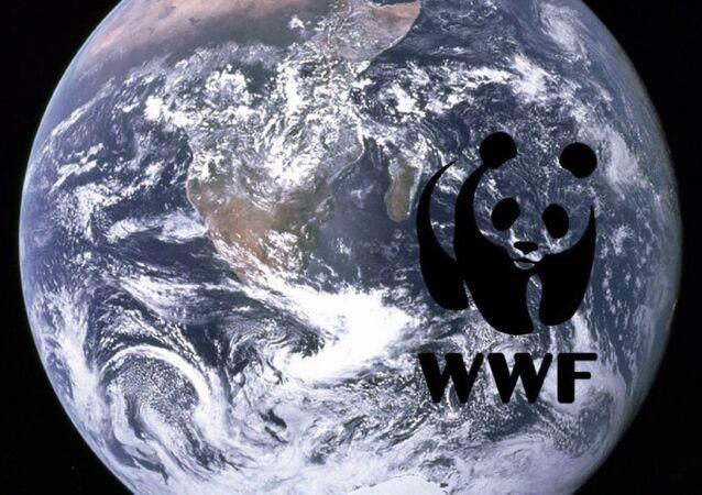 Земля WWF