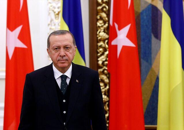 Cumhurbaşkanı Recep Tayyip Erdoğan, Ukrayna'da