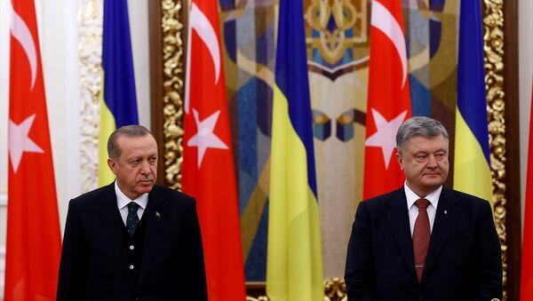 Cumhurbaşkanı Recep Tayyip Erdoğan ile Ukrayna Devlet Başkanı Petro Poroşenko - Sputnik Türkiye