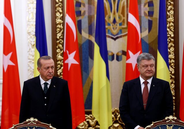 Cumhurbaşkanı Recep Tayyip Erdoğan ile Ukrayna Devlet Başkanı Petro Poroşenko