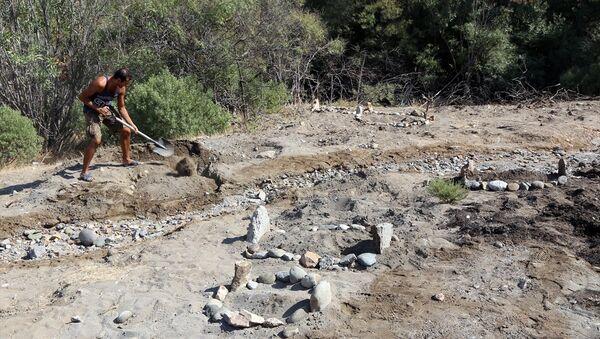 Deniz kaplumbağası mezarlığı - Sputnik Türkiye