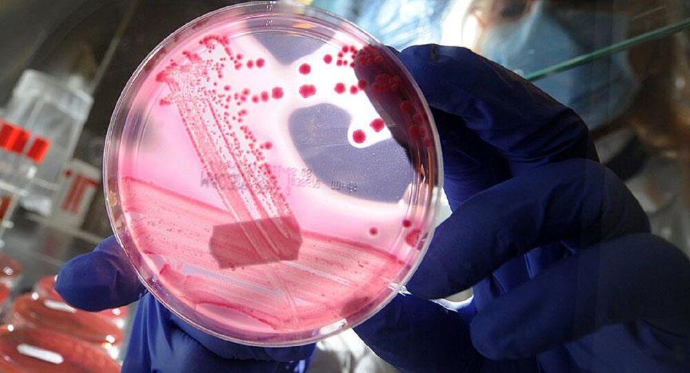 DNA, genetik, deney, gen mühendisliği
