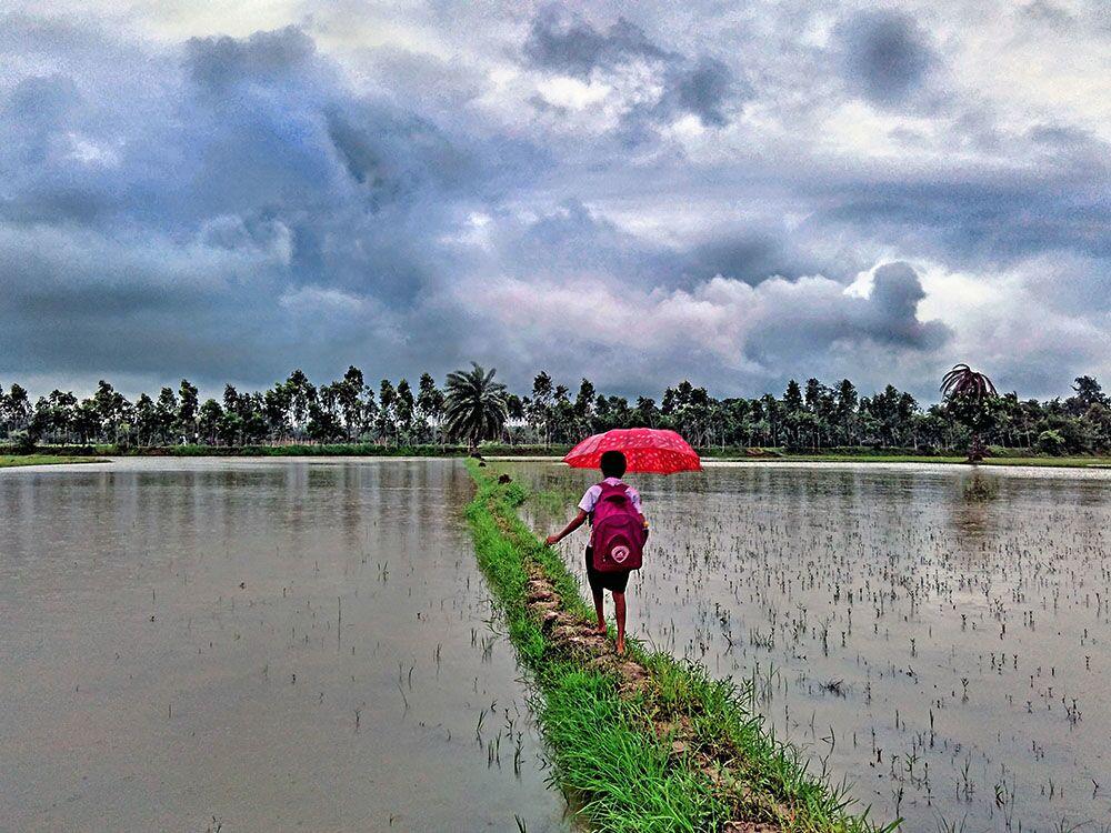 Yılın en iyi çevresel fotoğrafçıları