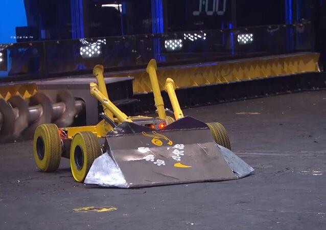 Robot Savaşları
