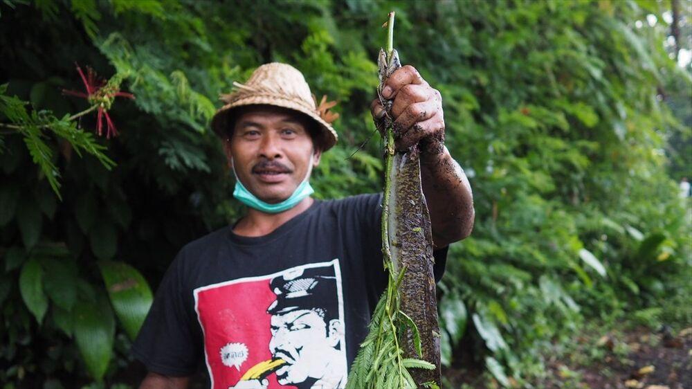 Endonezya'nın Bali Adası'nda Agung Yanardağı faaliyete geçti