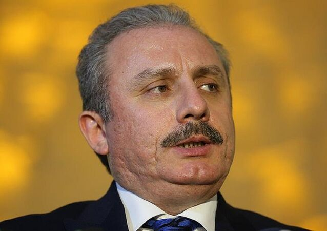 AK Parti İstanbul Milletvekili TBMM Anayasa Komisyonu Başkanı Mustafa Şentop