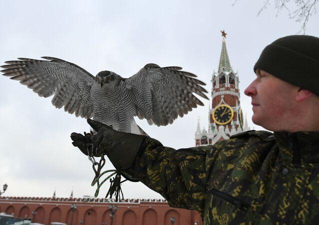 Kremlin'de şahin koruma servisi