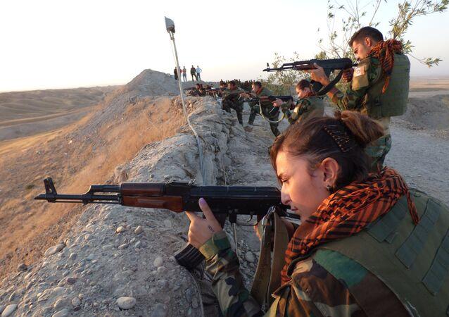 Peşmerge ile Irak Ordusu, sınır kapıları nedeniye anlaşamıyor