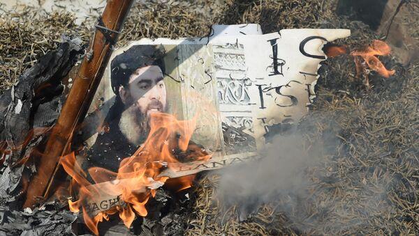 Hindistan Yeni Delhi Şiiler IŞİD-Bağdadi'yi protesto etti - Sputnik Türkiye